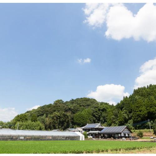 地元肉料理、東海地方の地鶏、関西地方の牛肉、九州地方は