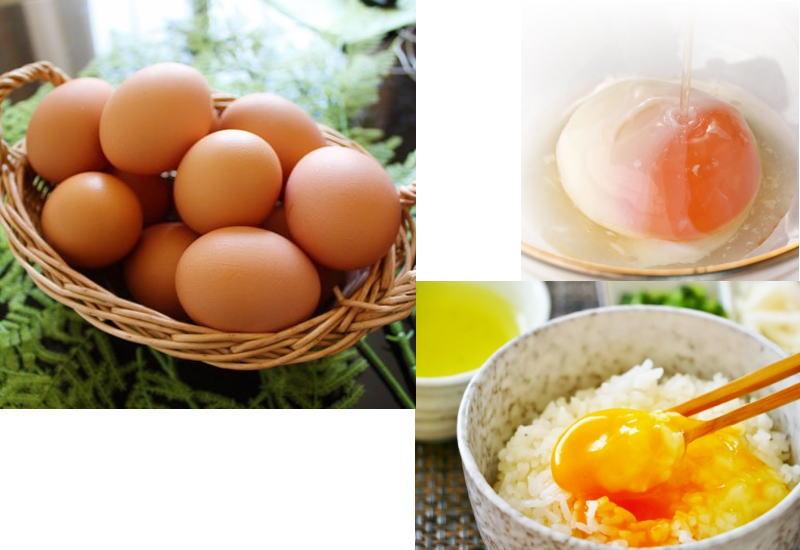 鶏の活躍は、鶏肉ばかりではありません。卵や愛玩用もそのひとつです。