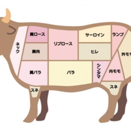 ワンランク上の牛肉知識、部位肉(パーツ)