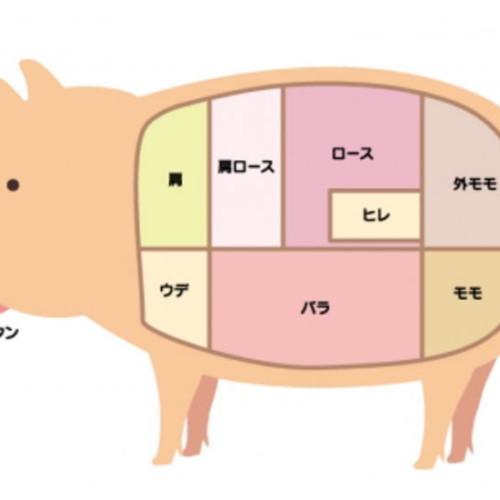 ワンランク上の豚肉知識、部位肉(パーツ)