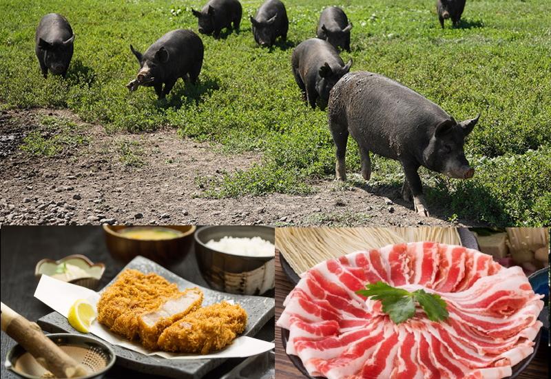 黒豚と一般的に販売されている豚の違いは