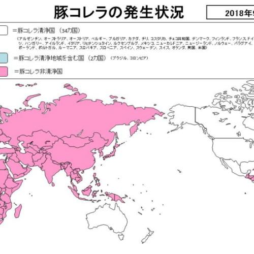 豚コレラ最新状況と市場への影響(2019/02/17)