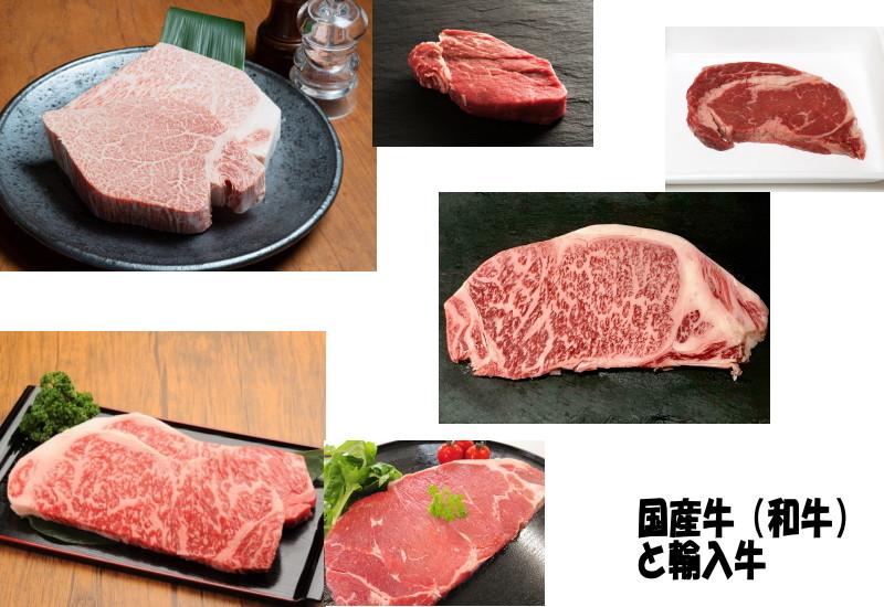 ステーキ肉の選び方